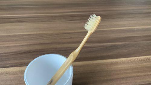 竹の歯ブラシ おすすめ 感想 FINEeco41